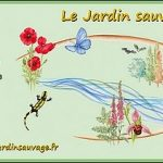 Interview du Pdt de l'association naturaliste Jardin Sauvage