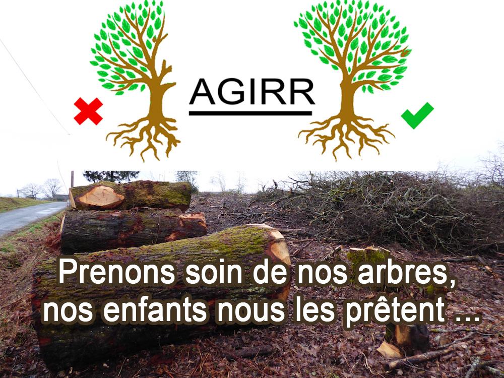 Mieux élaguer ses arbres en Corrèze suite à obligation du CG19