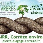 """TULLE ciné débat """"l'intelligence des arbres"""" - cinéma VEO"""