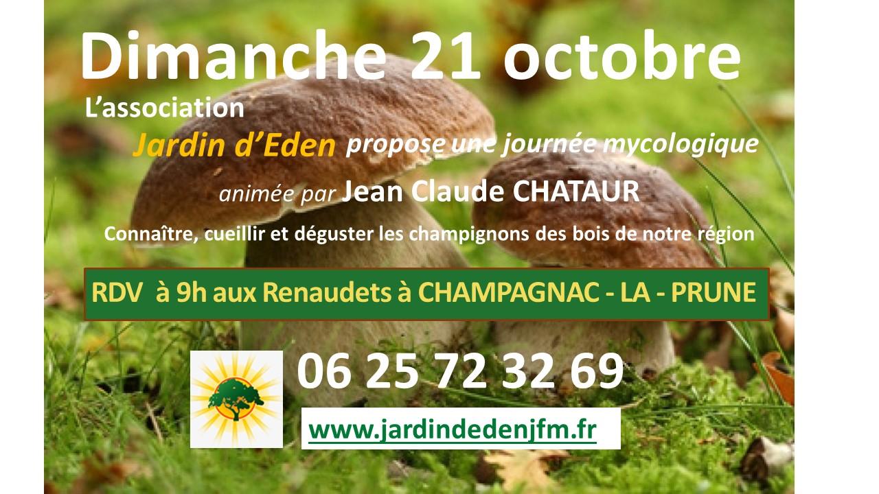 Dimanche découverte champignons 21 octobre à Jardin d'Eden @ Les renaudets