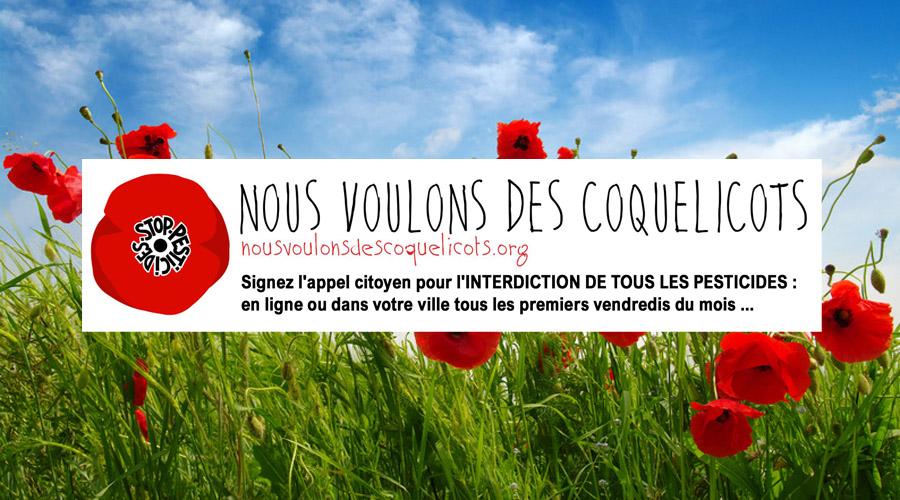 Nous voulons des coquelicots à Brive-Tulle (sud Corrèze)