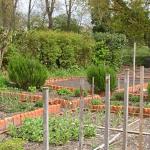 Jardins familiaux à prendre
