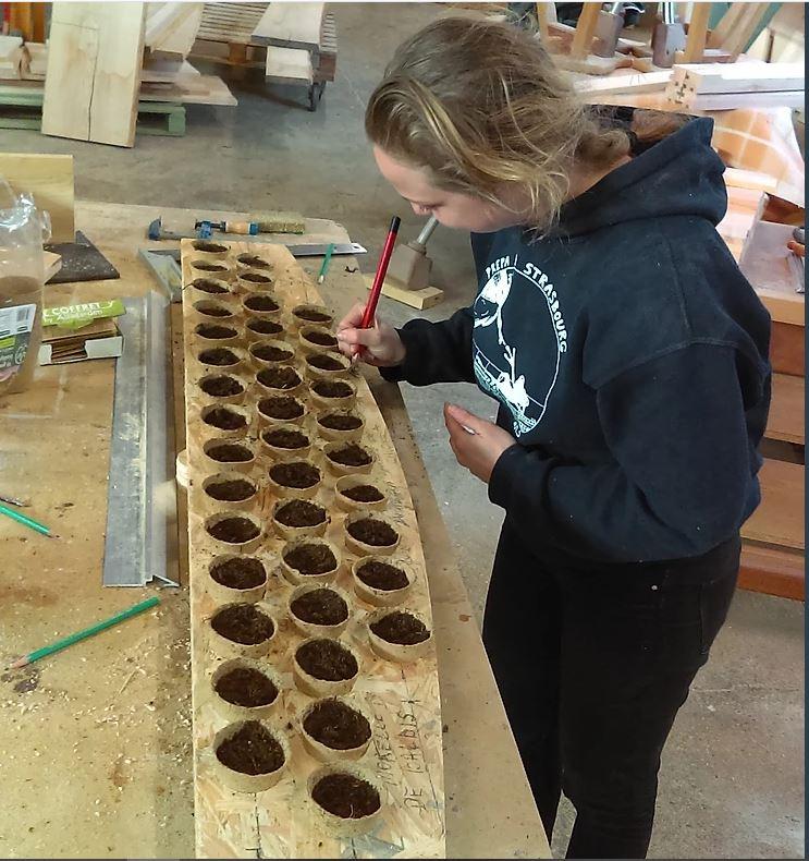 Café Débat : Produire ses propres graines @ Café chez Nadine