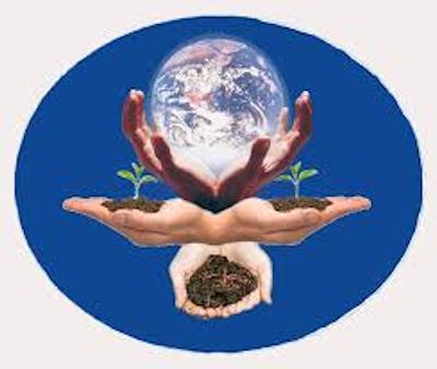 Réunion Sel de terre : créer et entretenir sa grainothèque (Egletons) @ Le Ravinel