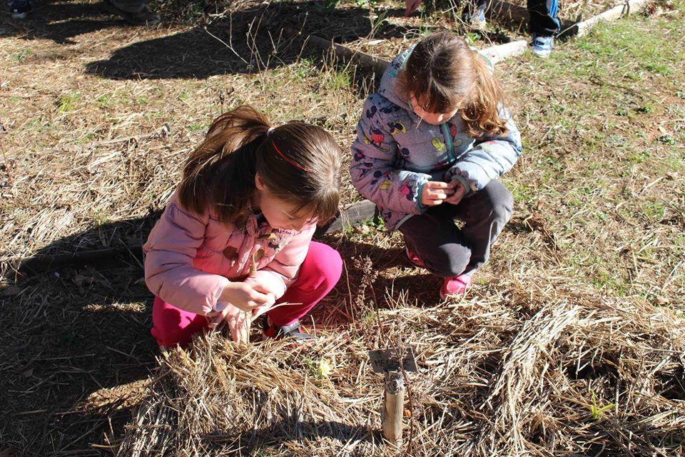 Atelier nature bricolage et cuisine pour les 7-10ans @ Les Pieds dans la Salade