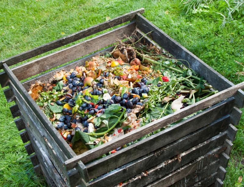 Le compostage dans tous ses états (Partie 1) - des principes et des actes @ Battement d'ailes