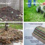 Confinement des déchets verts (en les réutilisant !) 4 conseils d'Amandine Dewaele
