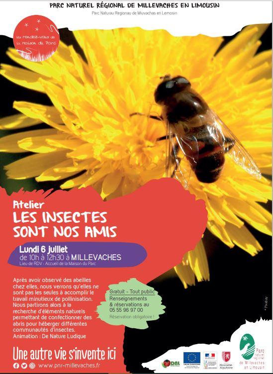 Atelier : les insectes sont nos amis @ Parc Naturel Régional de Millevaches