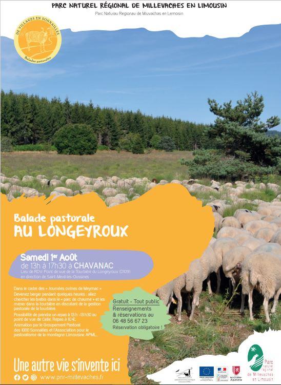Balade pastorale de Villages en Sonnailles au Longeyroux @ Point de vue du Longeyroux D109 direction Saint Merd les Oussines