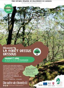 Sortie découverte : la forêt dessus dessous