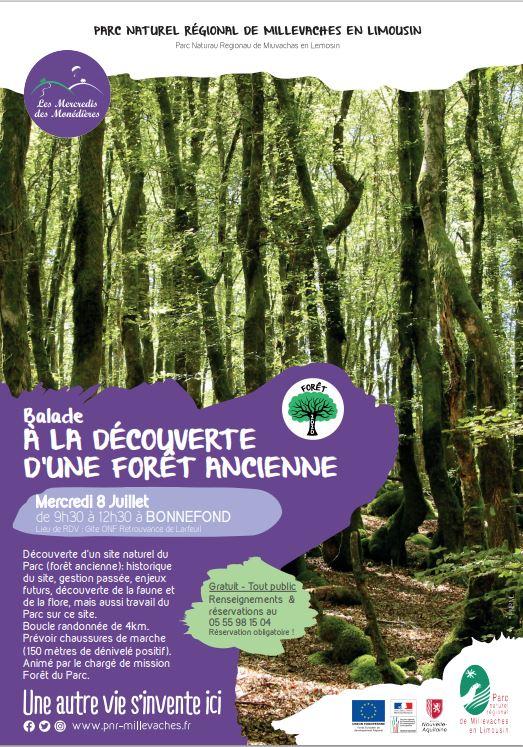 A la découverte d'une forêt ancienne - SIEM de la Molestie @ Gite ONF Retrouvance de Larfeuil