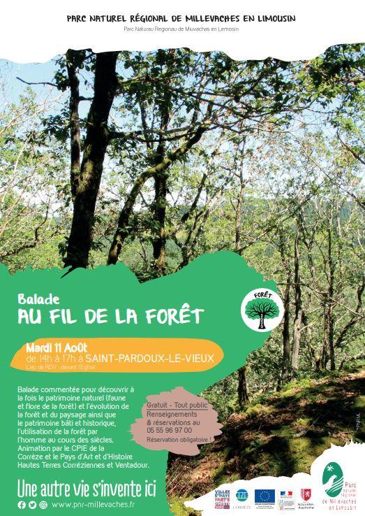 Balade au fil de la forêt à Saint-Pardoux-Le-Vieux @ Eglise à SAINT-PARDOUX-LE-VIEUX
