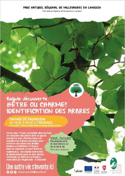 Hêtre ou charme ? Identification des arbres en forêt à l'automne @ Parking du belvédère du barrage des Barriousses