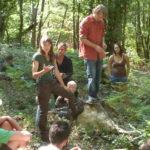 Deux RV arbres, forêts, écologie, anti-coupes-rases en Corrèze ce WE